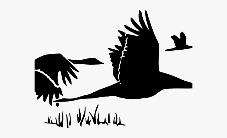Flying Geese , Transparent Cartoon, Free Cliparts.