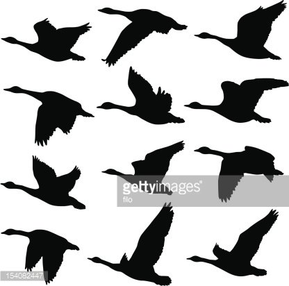 Flying Geese Silhouettes Clipart Image.