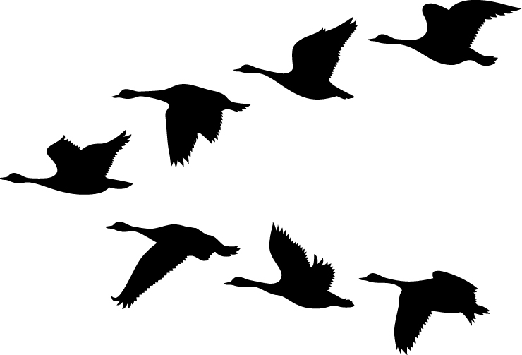 Flying Geese Silhouette at GetDrawings.com.