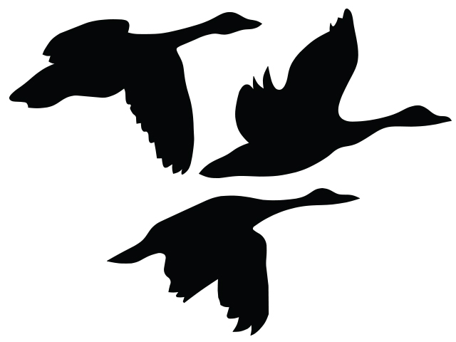 Flying Goose Clipart.