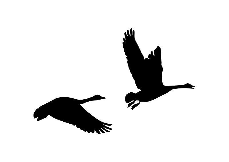 Pair Of Flying Geese Silhouette.