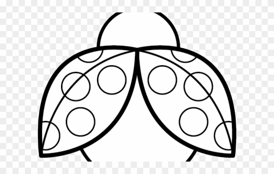 Symmetry Clipart Ladybug.