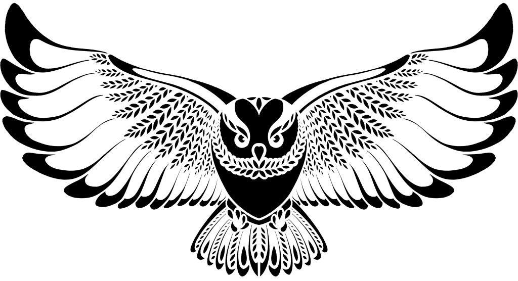 Owl Flying Drawing Flying owl drawing tumblr.