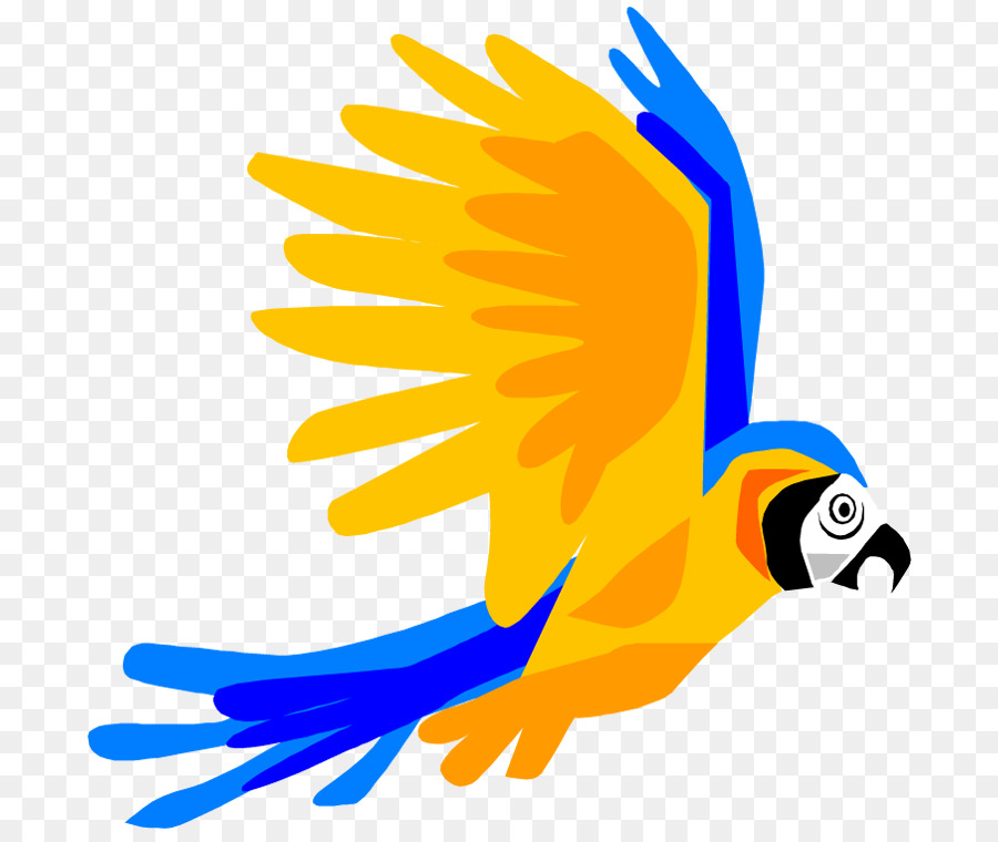 Cartoon Parrot Clipart at GetDrawings.com.