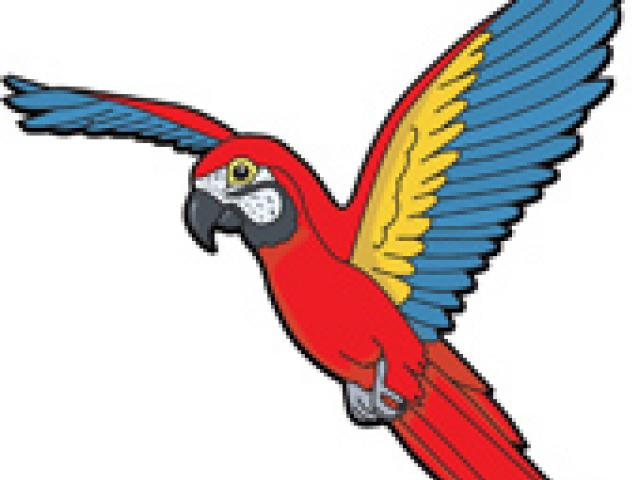 Birds Flying Picture Free Download Clip Art.
