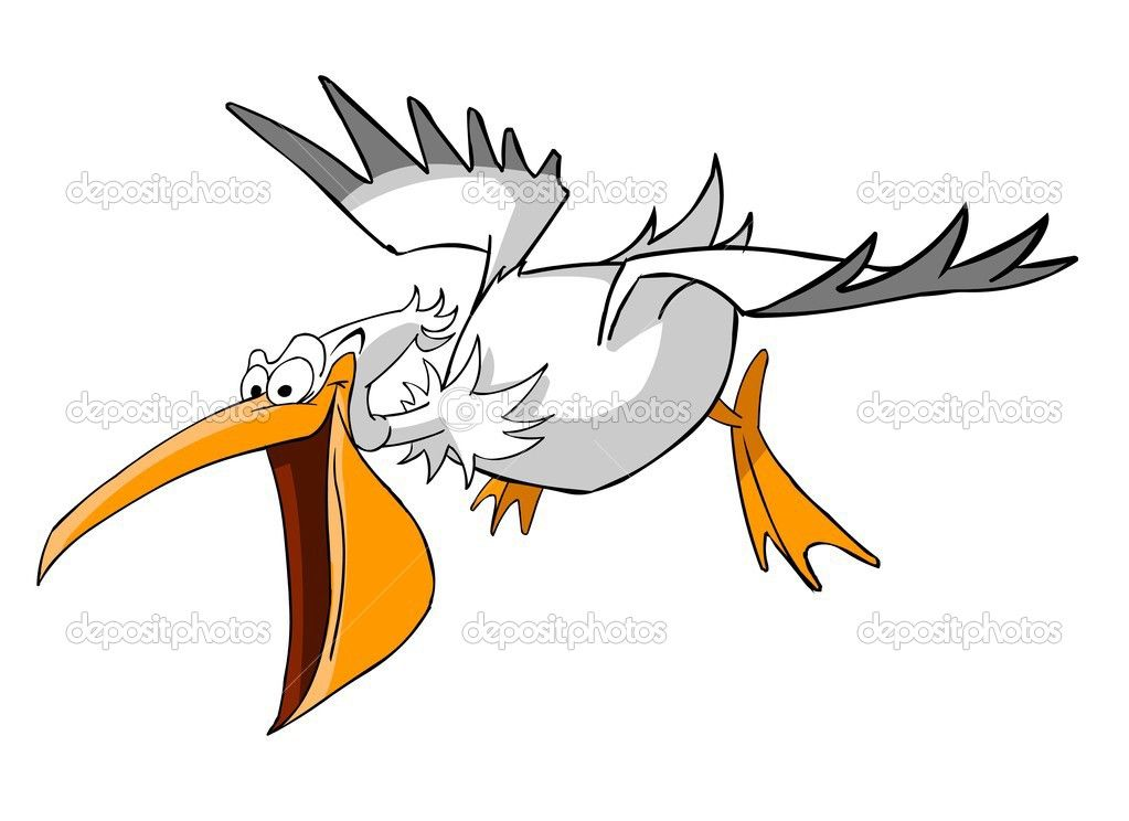 pelican cartoon flying.