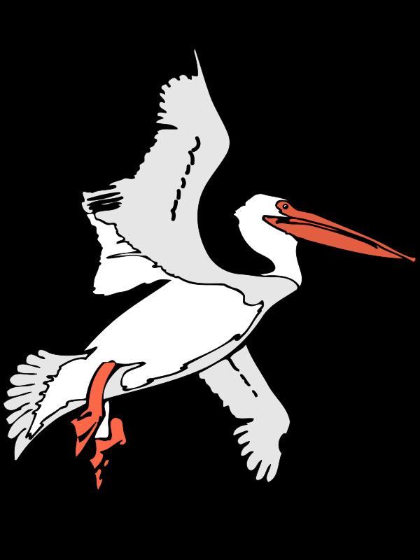 Flight Brown pelican Clip art.