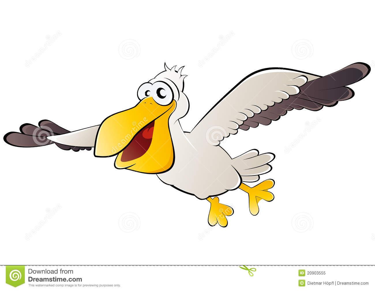 Pelican Flight Stock Illustrations.