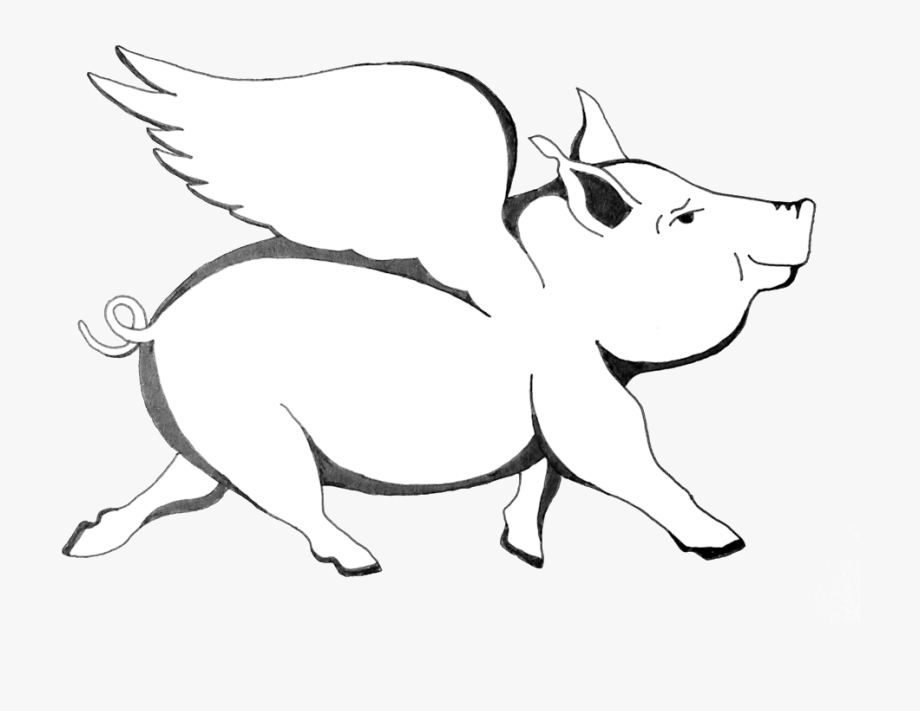 Flying Pig Png.