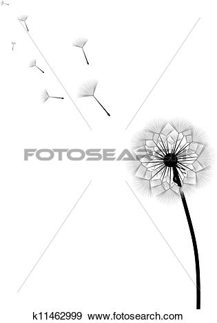 Clip Art of Dandelion with flying seeds k11462999.