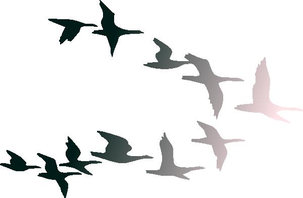 Bird flight Bird flight Clip art.