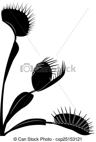Vector Illustration of Venus flytrap.