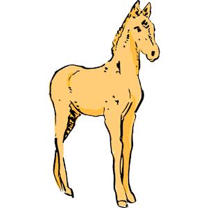 Foal Clipart.