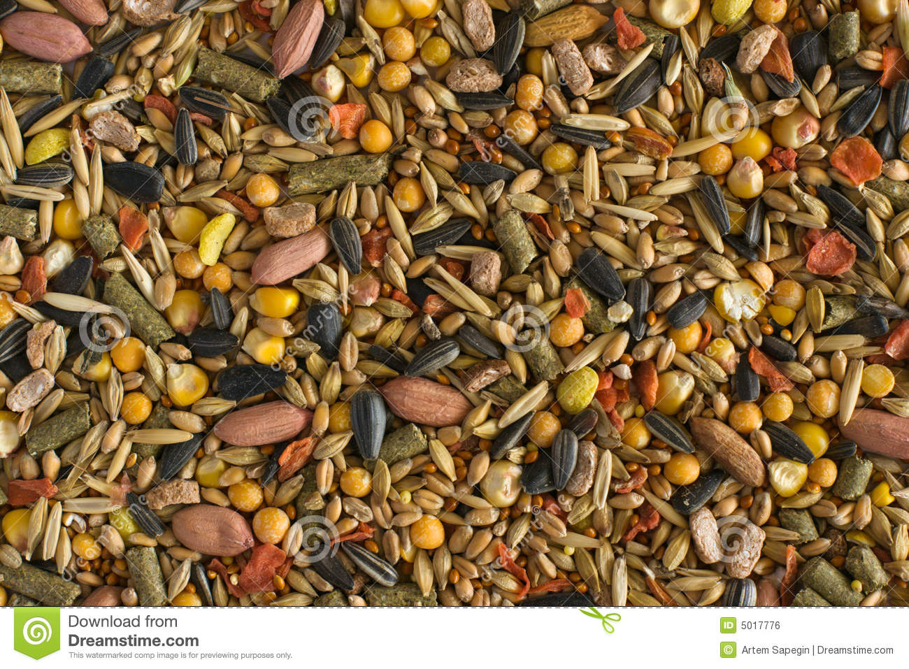 Hamster Fodder Texture Royalty Free Stock Image.