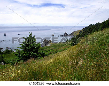 Stock Images of Grassy hillside and fog bank k1507226.