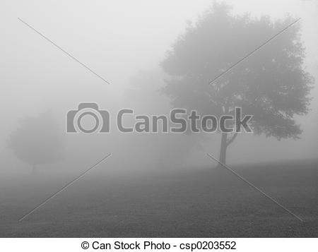 Stock Photo of Foggy Day BW.