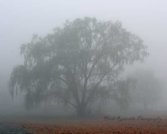 Items similar to 8x10 Photograph Surreal Foggy Day and Weeping.