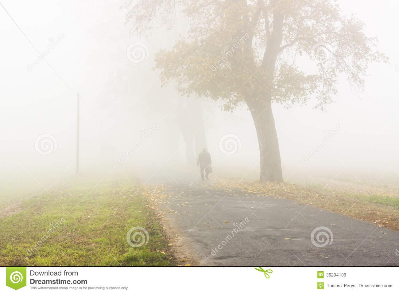 Autumn Foggy Day.