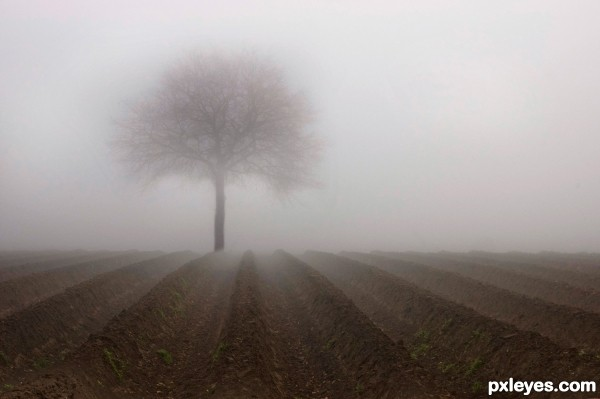 Foggy Clipart.