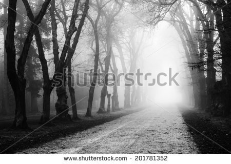 Misty Landscape Stock Photos, Royalty.