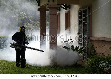 Bianda Ahmad Hisham's Portfolio on Shutterstock.