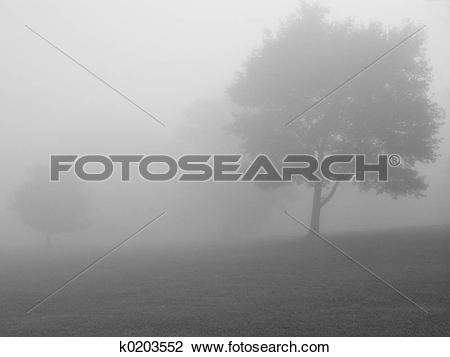 Stock Photo of Foggy Day BW k0203552.