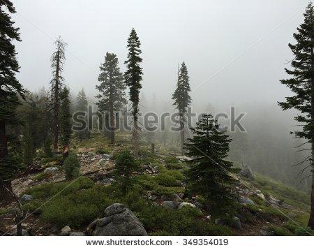 Foggy Landscape Stock Photos, Royalty.