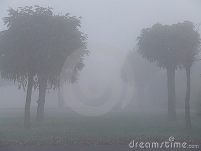 Foggy Fall Clipart.