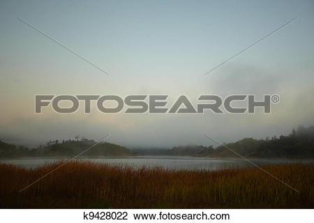 Stock Photo of Foggy Morning Landscape k9428022.