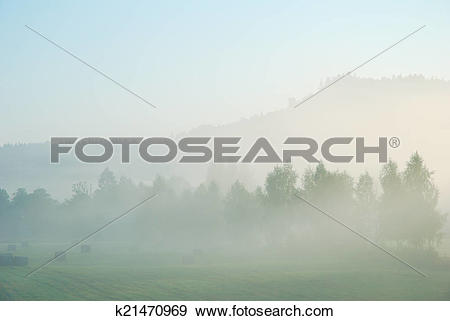 Stock Photograph of Foggy morning rural landscape with field.