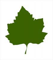 Free Leaves Clipart.