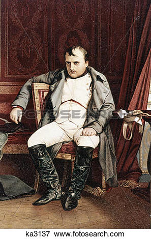 Picture of 1700s 1800s napoleon bonaparte seated at fontainebleau.
