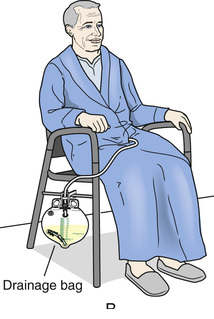 Foley Catheter Clipart Bag Ized.