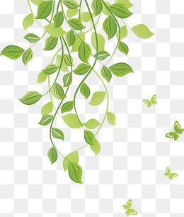 2019 的 Green Pattern, Green Leaves, Leaves, Flower Vine PNG.