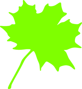 Clipart green leaves.