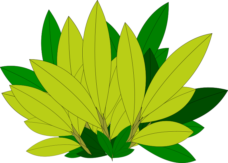 Free Nature Clipart.