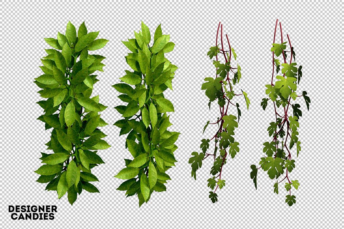 3D Foliage.