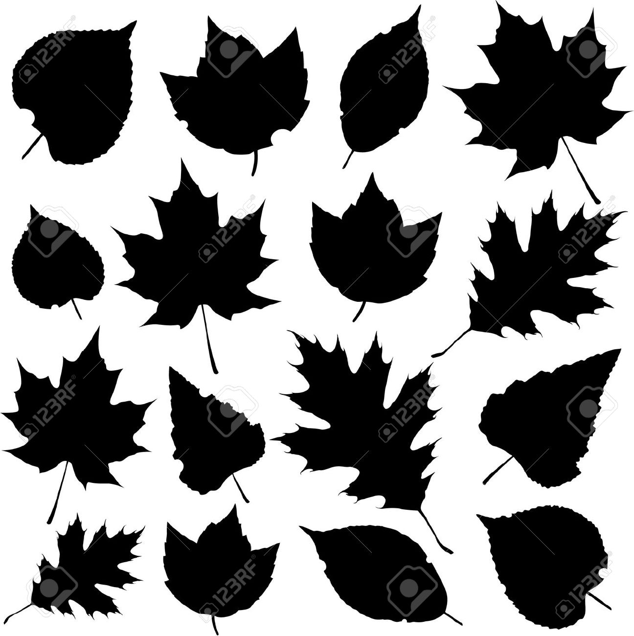 Leaf Silhouettes Royalty Free Cliparts, Vectors, And Stock.