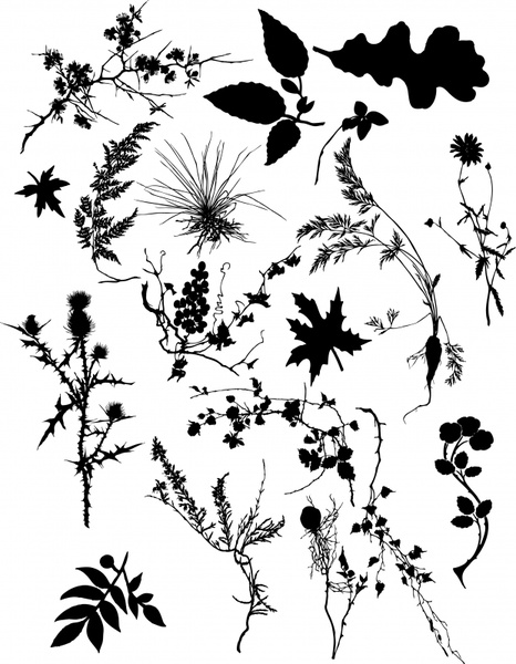 Free vector plant silhouette free vector download (8,924 Free.