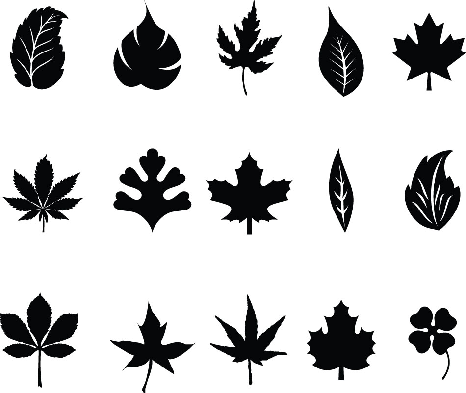 Silhouette clipart fall leaves.