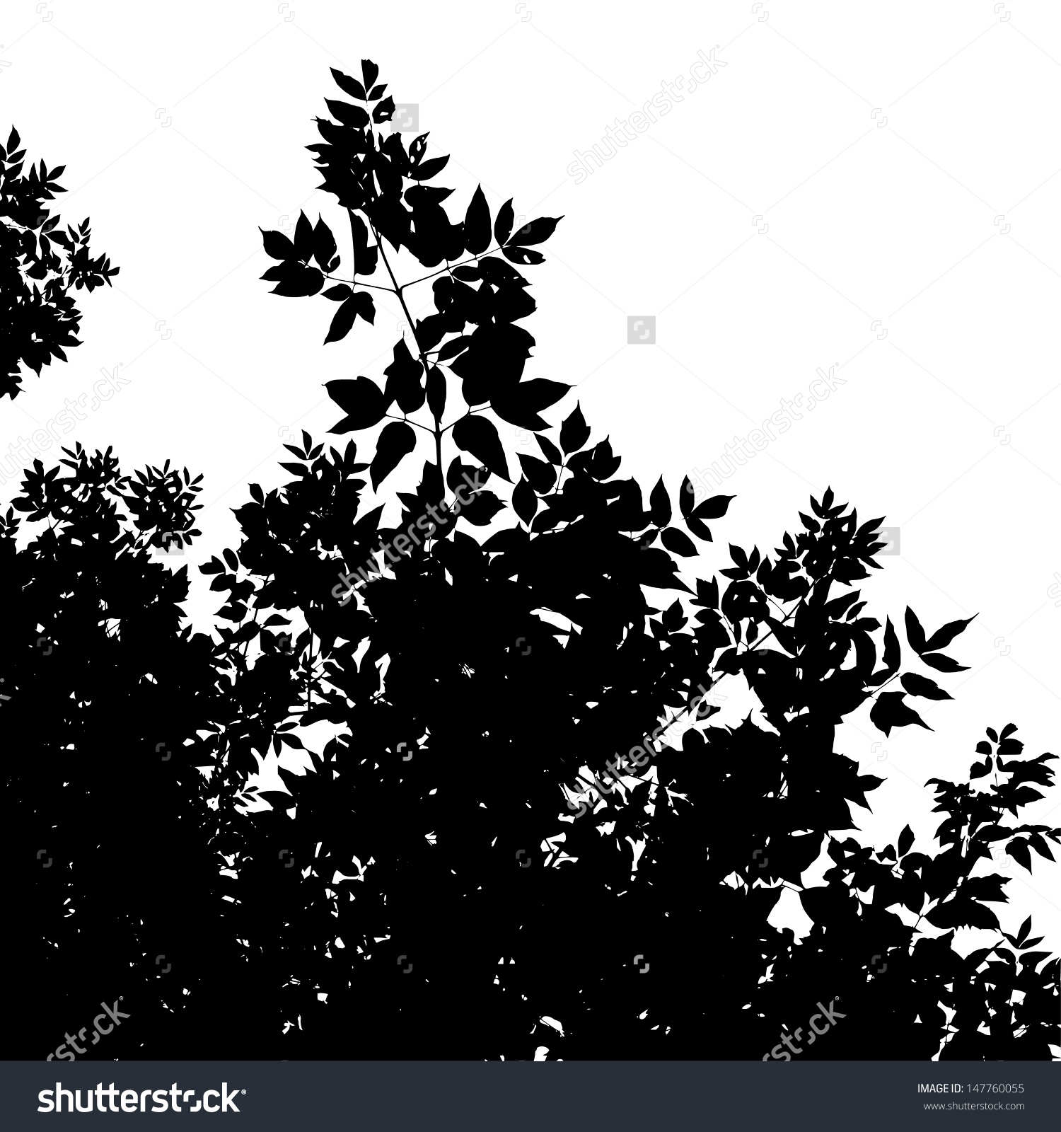Abstract Background Leaves Silhouette American Maple Stock Vector.
