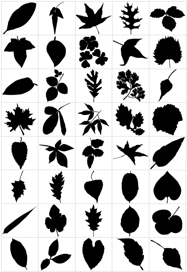 450+ Free Graphics: Lush Vector Trees and Summer Leaves.