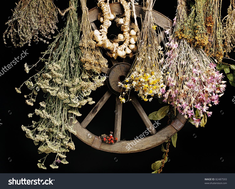 Folk Medicine.Medicinal Herbares On A Black Background.Green.