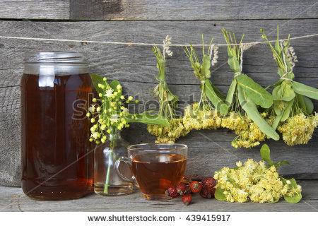 Folk Medicine Flower Stock Photos, Royalty.