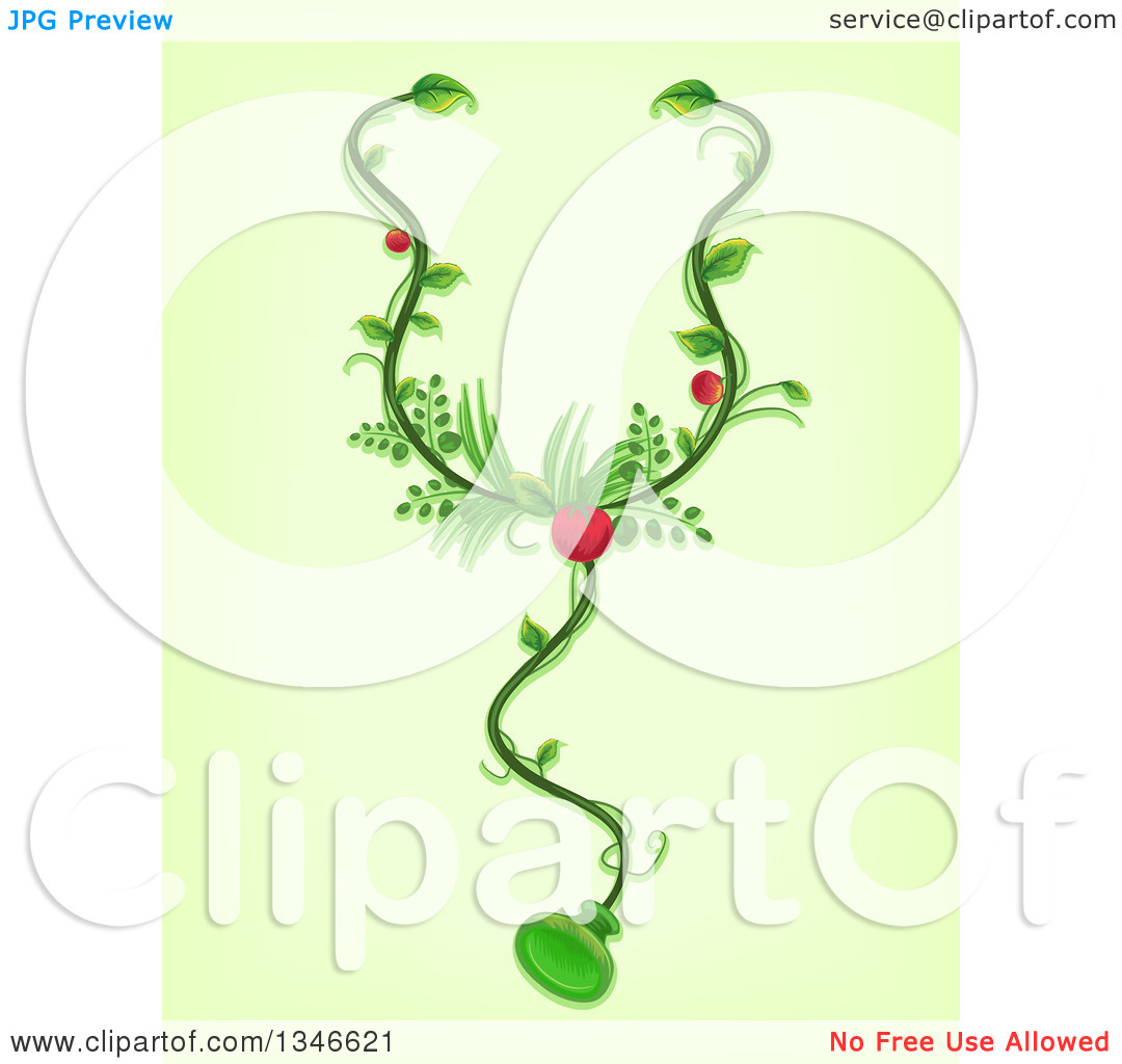 Clipart of a Stethoscope Made of Vines and Medicinal Plants.