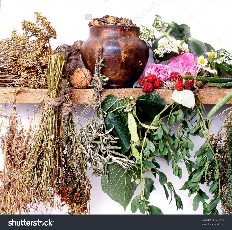Folk Medicinegreen Pharmacy Alternative Medicineshelf Witchdoctor.