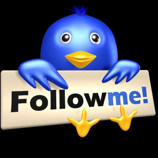 Bird, follow, me, social media, symbol, twitter icon.