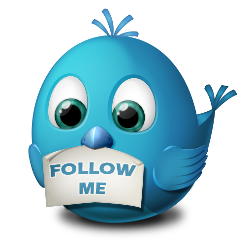 Twitter follow me Icon.