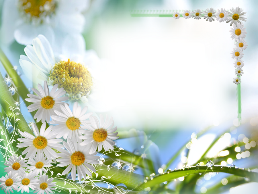 Blossom Background clipart.