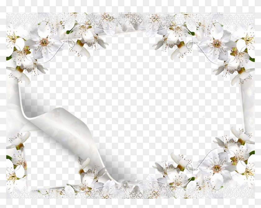 White Flower Frame Png Picture.